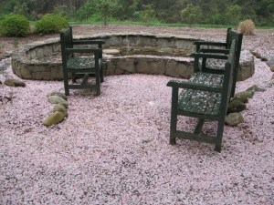1-empty chairs in garden everything covered in pink cherry blossoms